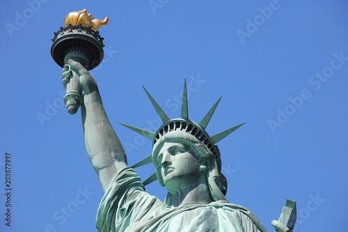 In de dag New York City American symbol - Statue of Liberty. New York, USA.