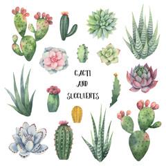 Akvarel vektorski set kaktusa i sočnih biljaka izoliranih na bijeloj pozadini.