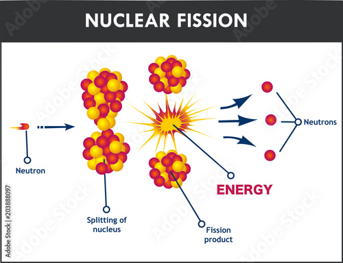 diagram showing nuclear fission buy this stock vector and explore Nuclear Fission of Uranium 235 diagram showing nuclear fission