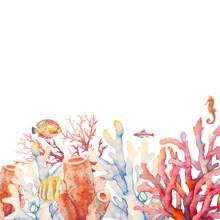 Watercolor Coral Border. Hand ...