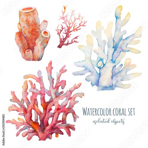 Fototapeta premium Akwarela koralowa ilustracja. Ręcznie rysowane na białym tle podwodne gałęzie na białym tle. Kolekcja Sea Life