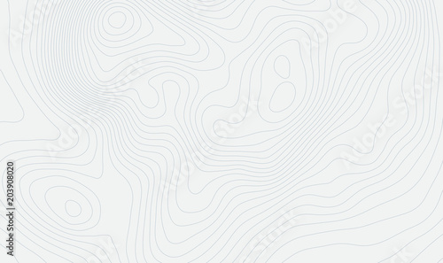Fototapety, obrazy: Topographic map background concept with space for your copy. Topography lines art contour , mountain hiking trail , Shape vector design. Computer generated   .