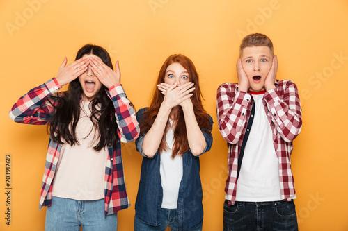 Fotografie, Obraz  Group of shocked school friends looking at camera
