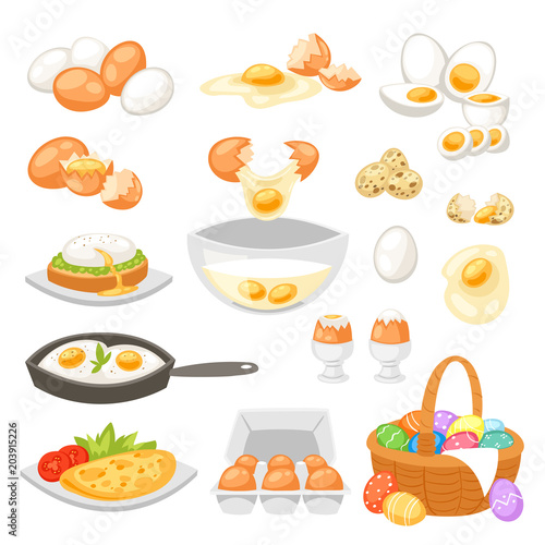 Egg vector easter food and healthy eggwhite or yolk in egg-cup or cooking omelet Canvas Print