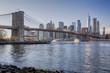 New York, Lower Manhattan skyline with Brooklyn Bridge