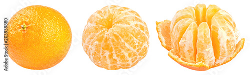Collection of fresh mandarins isolated on white