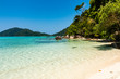 Beautiful empty tropical sandy beach surrounded by lush vegetation and jungle
