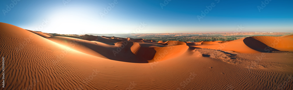 Fototapety, obrazy:  Desert Rub' al Khali, Emirates, Abu Dhabi, Liwa, Jan.2018