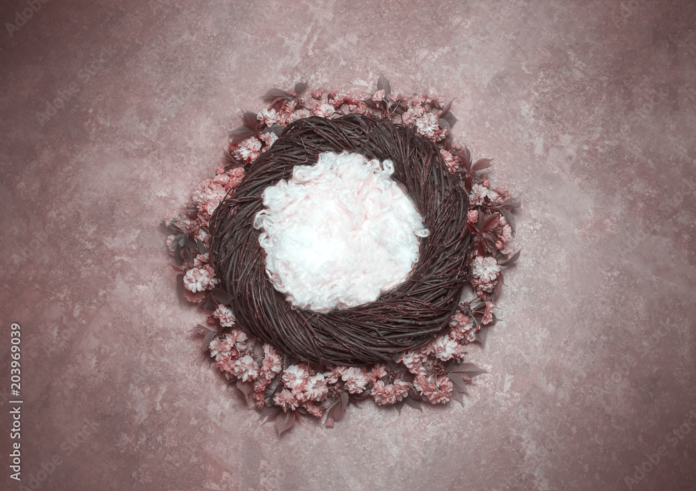 Bird Nest Fantasy Background Photo Prop with vine and flowers Isolated on pink rose color. Newborn photography digital background prop