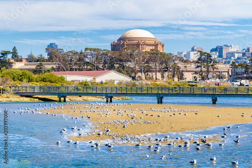 Tuinposter Amerikaanse Plekken Palace of Fine Arts, San Francisco, California