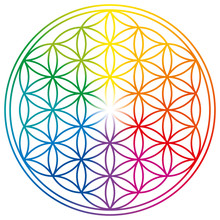 Flower Of Life In Rainbow Colo...