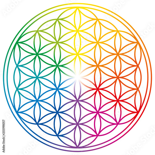 Flower of Life in rainbow colors. Geometrical figure, spiritual symbol, Sacred Geometry. Overlapping circles forming a flower like pattern with symmetrical structure. Illustration over white. Vector. Wall mural