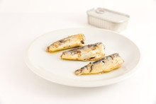 Sardines In Oil On White Plate
