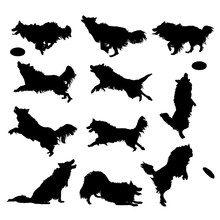 Vector Silhouettes Of A Border...