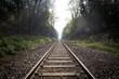 canvas print picture - train track