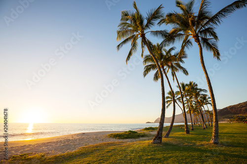 Poster Oceanië Oahu