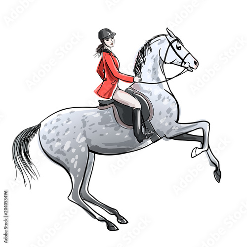 Beautiful Rider And Dapple Grey Horse On White Horseman Girl In Red Jacket On Rearing Up Stallion England Equestrian Sport Style Hand Drawing Vector Cartoon Illustration Buy This Stock Vector And