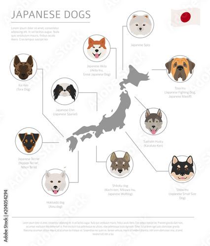Fotografía Dogs by country of origin