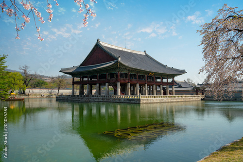 Gyeongbokgung Palace with cherry blossom or call sakura in spring with blue sky and clouds at Seoul city, South Korea Poster