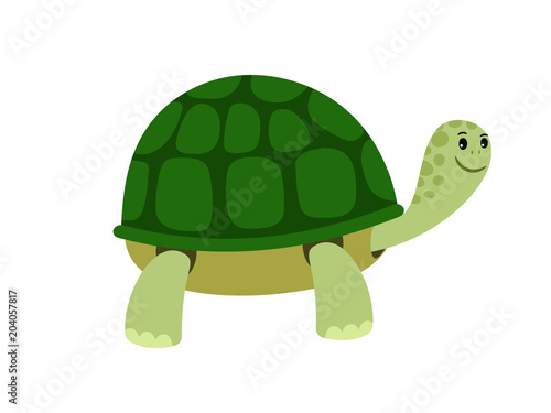 Fototapeta Green cute turtle cartoon icon