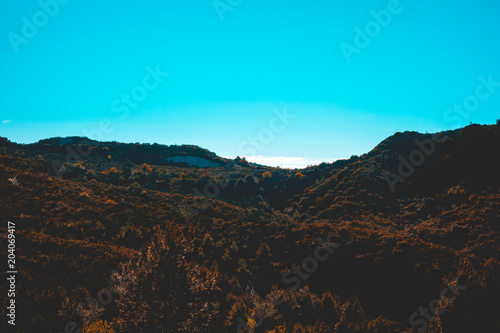 Foto op Plexiglas Turkoois some forest mountains with copy space in the sky