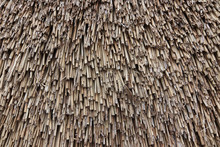 Texture Of The Reed Roof