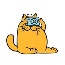 Cartoon Orange Cat With Camera Is Taking Pictures. Vector Illustration