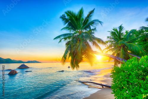 Slika na platnu Seychelles