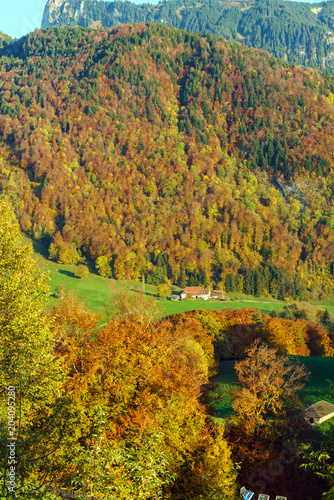 Staande foto Honing Scenic landscape with autumn forest in the Alps mountains, Gruyeres, Switzerland