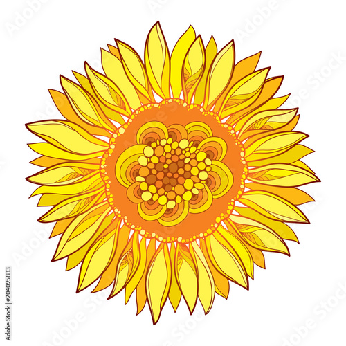 Vector Round Composition With Outline Yellow Sunflower Or Helianthus