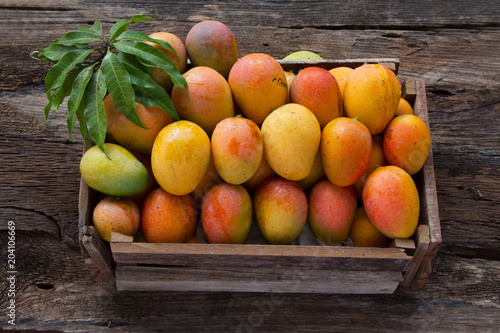Mango fruits in wooden box with leaf after harvest from farm, Mango fruits with leaf on wood background