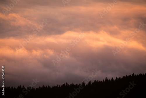 Obraz A beautiful sea of clouds over the forest, everything was gold in the color of the sunrise, you can barely see the trees through the clouds - fototapety do salonu