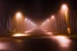 Туман в парке / Fog in the Park