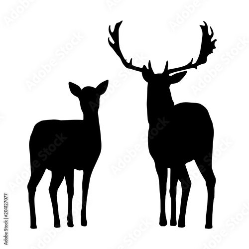 Slika na platnu Vector silhouettes of deer and hind, isolated