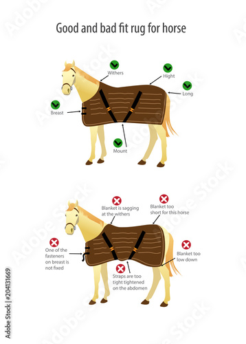 Poster with good and bad fit rug for horse. Vector illustration. Fototapet