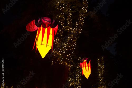 Fotografie, Obraz  Colorful lantern festival night