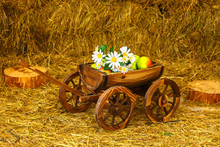 Wooden Cart With Flowers And F...