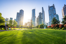 Modern Office Building With Green Lawn In Shanghai Park