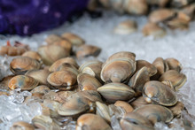 Clams On Ice At The Market