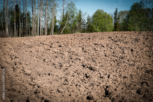 Foto op Aluminium Zalm Cultivated agricultural field, spring preparatory work for sowing and planting.