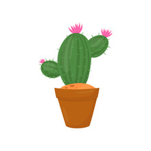 Green Cactus In Brown Pot. Plant With Little Pink Flowers And Spines. Indoor Gardening. Flat Vector Element Of Home Decoration