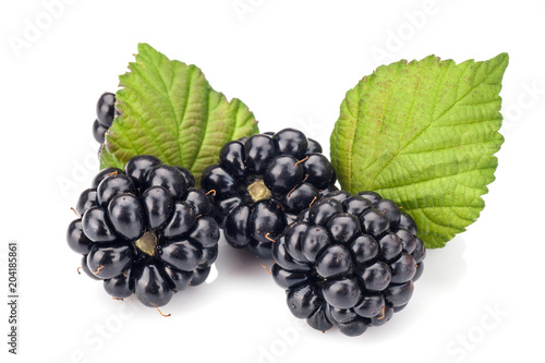 Blackberries on white