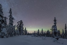 Starry Sky With Milky Way And Northern Lights Over Snow-covered Trees, Pyha-Luosto National Park, Lapland, Finland, Europe
