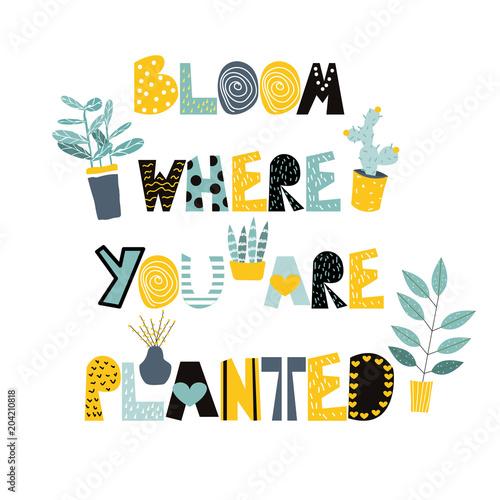 Modny nadruk z hasłem i uroczymi domowymi roślinami. Wektorowa ręka rysująca ilustracja.