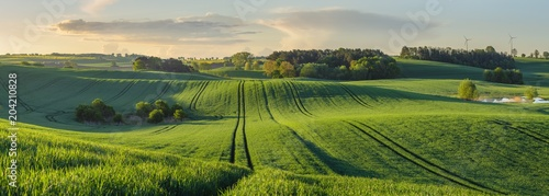Foto auf Gartenposter Landschappen green, shiny fields of young grain on wavy fields in Germany - High resolution panorama
