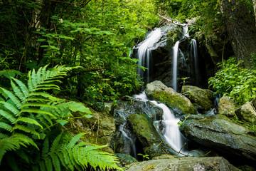 Cascade falls over mossy rocks in Czech forest