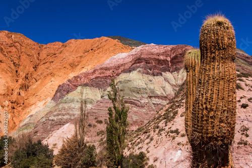 In de dag Oranje eclat Cerro de los siete colores - Purmamarca in Jujuy Province - Argentina
