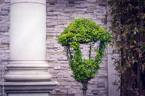 a park lantern with a green boxwood on the background of a column and a wall of Poster