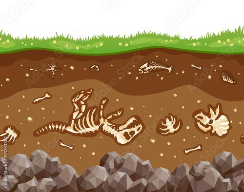 Soil layers with bones Fototapet