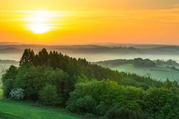 Panel Szklany Do gabinetu lekarskiego/szpitala Green fields at sunrise in mist